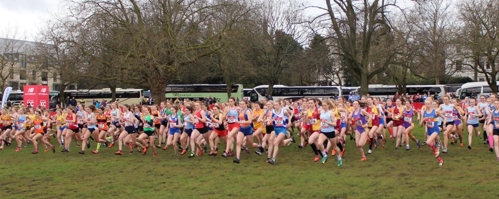 English Schools AA cross country runners